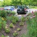 Bioretention 550x550.jpg