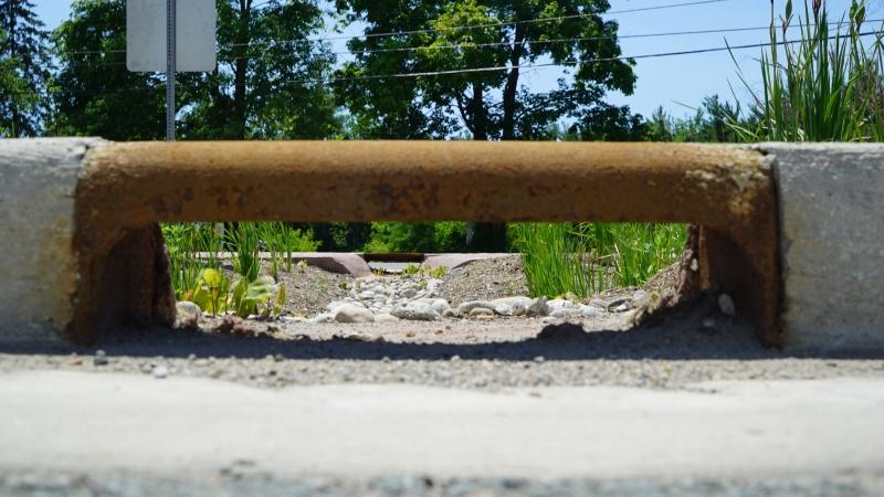 File:Mississauga Road - Brampton - curb cuts.JPG